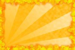 tła kolor żółty Obraz Stock