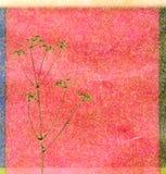 tła koloru koper ilustracji