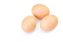 tła kurczaka jajka biały Odgórny widok obrazy stock