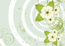 tła kwiatu grunge ładny ilustracji