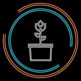 tła kwiatu ikony ilustracyjny setu wektoru biel Wzrastał znaka - kwiecisty ogród royalty ilustracja
