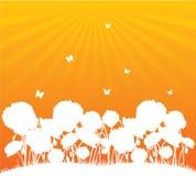 tła kwiatu pomarańcze Fotografia Royalty Free