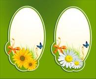 tła motyli kwieciści ziele ustawiający wektor Zdjęcia Royalty Free