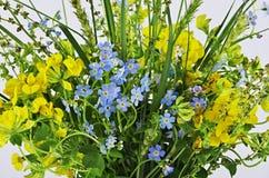 tła pięknych kwiatów lasowy ilustraci światło Obrazy Stock