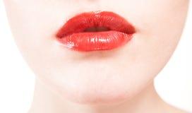 tła pięknych zbliżenia warg czerwony biel Zdjęcia Royalty Free