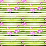 tła piłki plaży piękna pusta lato siatkówka Akwarela bezszwowy wzór Ręka Malujący zwrotnika lata motyw z flamingiem i lampasem Obrazy Stock