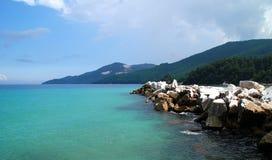 tła plaży gałąź krajobrazu morski zmierzchu drzewo Obraz Stock