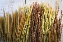 tła pojęcia karmowy pszeniczny drewniany Odgórny widok Fotografia Stock