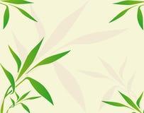 tła porcelany zieleni liść Obrazy Royalty Free