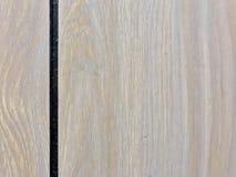 tła projekta meblarski wewnętrzny kanapy drzewa ściany tapety fala biel Zdjęcie Stock