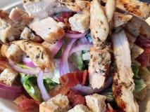 tła pucharu kurczak odizolowywał pietruszki brzoskwini kawałków ryżowego sałatkowego biel Zdjęcie Stock