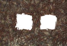 tła ram iso przybija ośniedziali dwa Zdjęcie Royalty Free