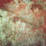 tła rośliny mała tekstury ściana Obrazy Royalty Free