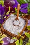 tła skąpanie odizolowywający solankowy biel Zdjęcia Royalty Free