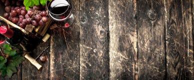 tła szkła czerwone wino Czerwone wino z pudełkiem winogrona Zdjęcia Royalty Free