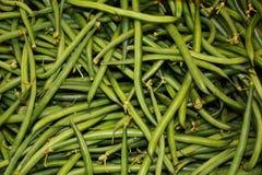 tła tło fasoli jedzenia zieleni serie Obraz Stock