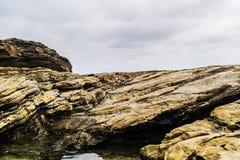 tła trakenów skały skalista kamieni struktura Zdjęcie Royalty Free