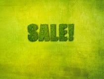 tła trawy sprzedaż Obrazy Stock