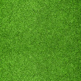 tła trawy zieleń Zdjęcie Stock