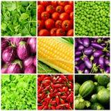 tła ustawiający warzywo Obrazy Stock