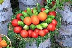 tła warzywo obraz stock
