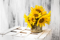 Tła wciąż życia kwiatu słonecznikowy drewniany biały rocznik Obrazy Stock
