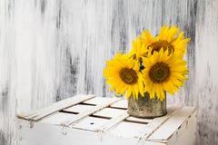 Tła wciąż życia kwiatu słonecznikowy drewniany biały rocznik Zdjęcia Stock
