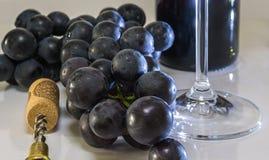 tła winogron biały wino Zdjęcia Stock