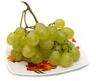 tła winogrona odizolowywający półkowy biel pojedynczy białe tło Obrazy Royalty Free
