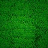 tła zamknięta trawy zieleni makro- tekstura makro- Zdjęcia Royalty Free