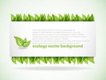 tła zieleni liść Ilustracji