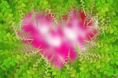 tła zieleni liść Obrazy Royalty Free
