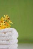 tła zielenieją ręcznika Obrazy Royalty Free