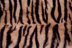 tła zwierzęcy futerko Obraz Royalty Free