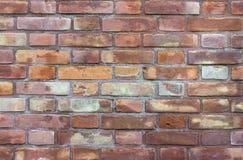 Tło ściana z cegieł Obrazy Royalty Free