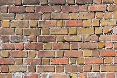 Tło ściana z cegieł Obrazy Stock
