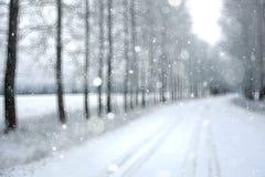 Tło śnieżny las obrazy stock