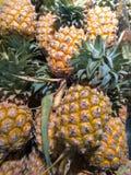 tło ananas dojrzały obraz royalty free