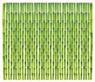 tło bambus Zdjęcia Stock