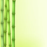 10 tło bambusowy eps ilustraci wektor royalty ilustracja