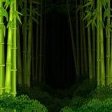 Tło bambusowy las przy nocą Fotografia Royalty Free