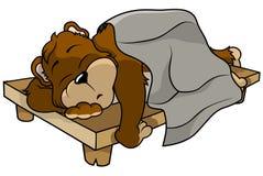 tło biel niedźwiadkowy sypialny Zdjęcia Stock
