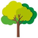 tło biel pojedynczy drzewny ilustracja wektor