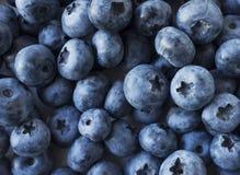 tło blueberry konsystencja świeżych owoców Tekstury czarnej jagody jagod zamknięty up zdjęcia royalty free