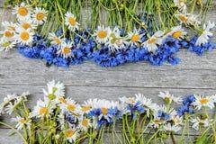 Tło bukiety piękni dzicy kwiaty stokrotki i cornflowers na tle stary drewniany tło kopia zdjęcia stock