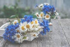 Tło bukiety piękni dzicy kwiaty stokrotki i cornflowers na tle stary drewniany tło kopia zdjęcie stock
