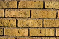 tło cegieł do ściany Zdjęcia Royalty Free