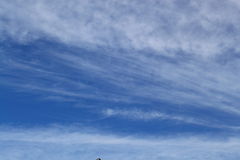 tło chmura Obraz Stock