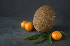 Tło, czerń, brąz, coco, koks, zmrok, egzot, jedzenie zdrowy, świeży, owocowy, zielony, składnik, liść, liście, minimalni, minimal obraz stock