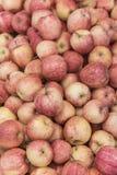 Tło czerwoni jabłka w rynku Obrazy Stock
